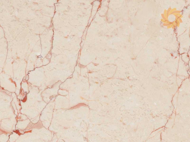 Beautiful Beige Colored Rosalia Slabs
